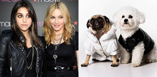 Madonna and Lourdes Share Clothes, Roberto Cavalli Designs Petwear