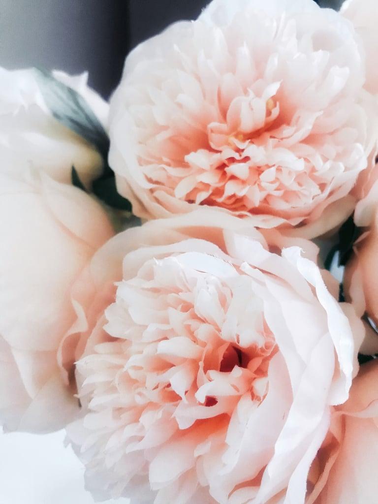 Pink Peonies iPhone Wallpaper