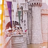 Sleeping Beauty's famous castle looked like it was as much a hot spot for photos then as it is now.