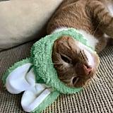 Bunny Ear Cat Cap ($8)