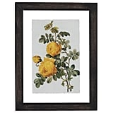 Vintage Yellow Roses Print