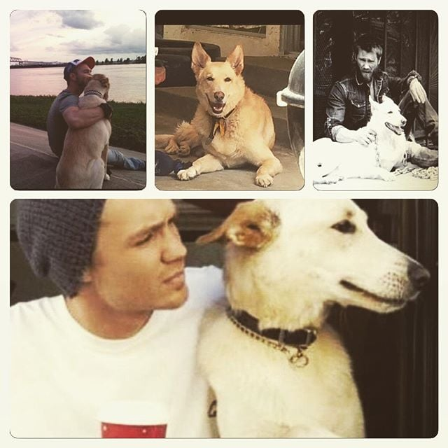 Chad Michael Murray's Dog Joe Dies | Pictures