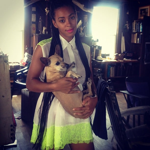 Solange Knowles cuddled with a cute puppy. Source: Instagram user mydamnstagrams
