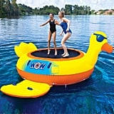 This is the duck trampoline: