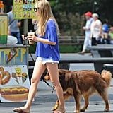 Amanda Seyfried took her dog for a walk.