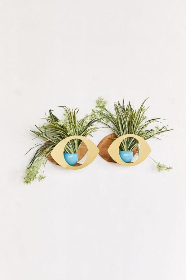 Eye Plant Wall Shelf