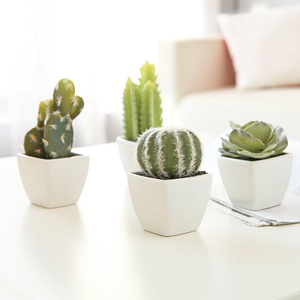 Artificial Mini Succulent & Cactus Plants (Set of 4)