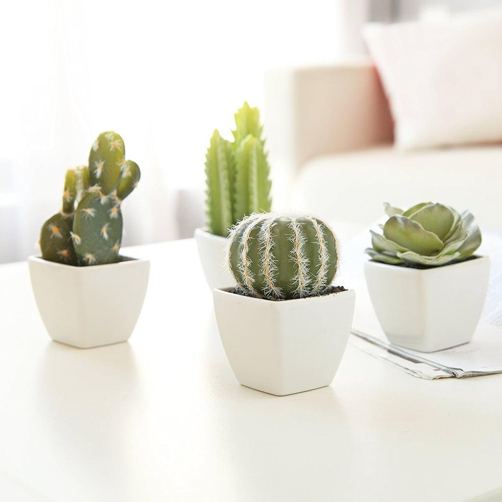 My Gift Set of 4 Artificial Mini Succulent & Cactus Plants