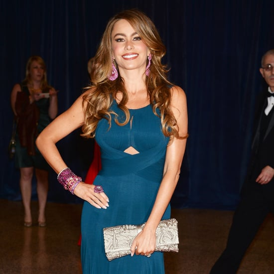 Sofia Vergard In Navy Blue Dress At White House Dinner