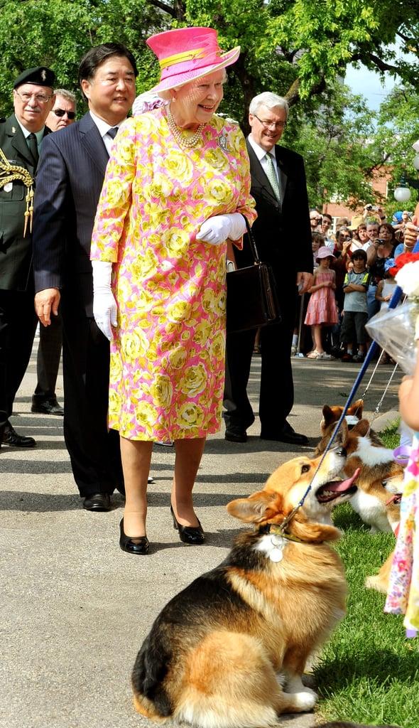 Why Did Queen Elizabeth Have So Many Corgis?