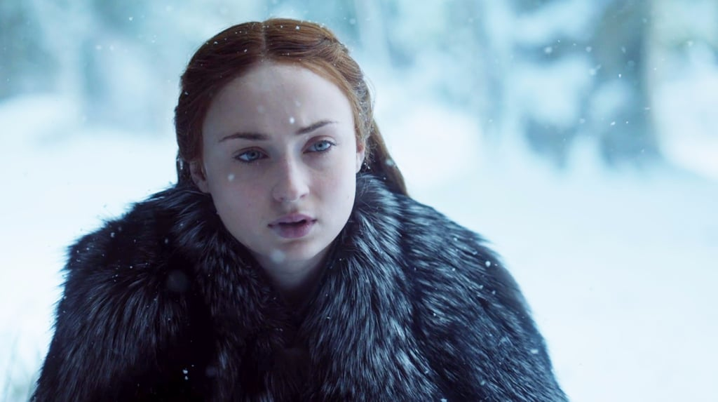 Reactions to Bran and Sansa's Reunion on Game of Thrones