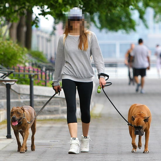 Celebrity Guess Who: Who Is The Actress Walking Her Dogs?