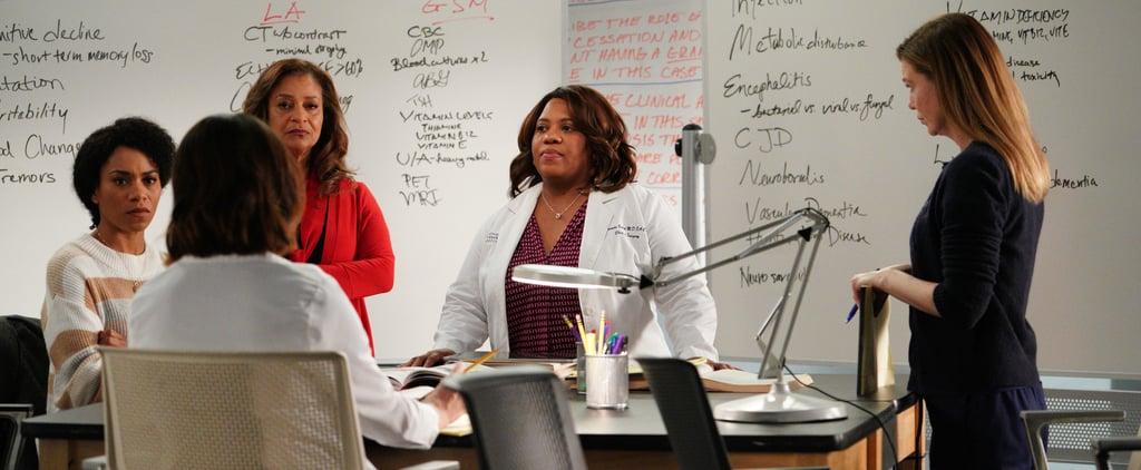 Grey's Anatomy Season 17 Cast
