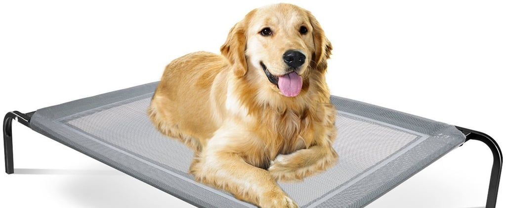 Elevated Cooling Pet Beds on Amazon