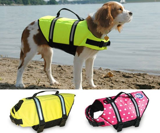 Paws Aboard Doggy Lifejacket