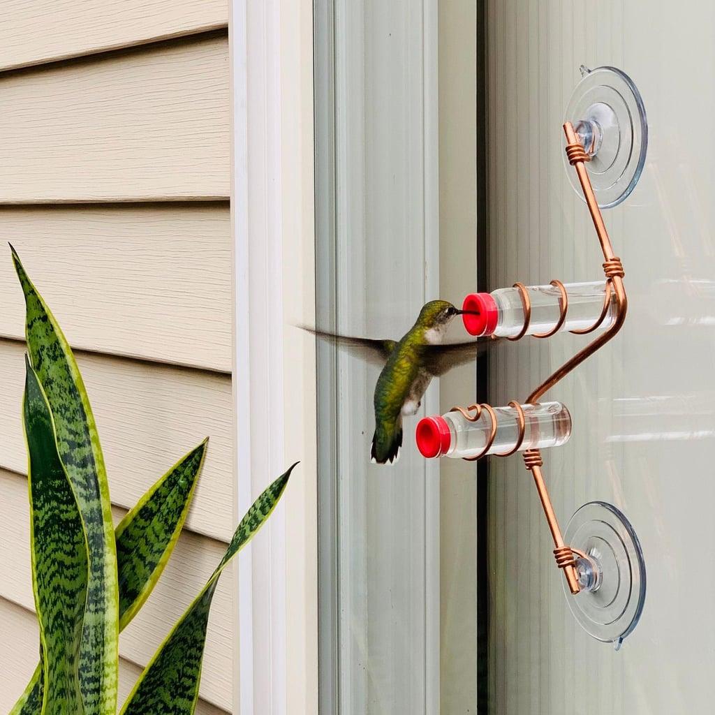Sweet Feeders Geometric Window Hummingbird Feeder
