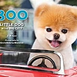 If these photos aren't enough, then Boo's latest book should do the trick!