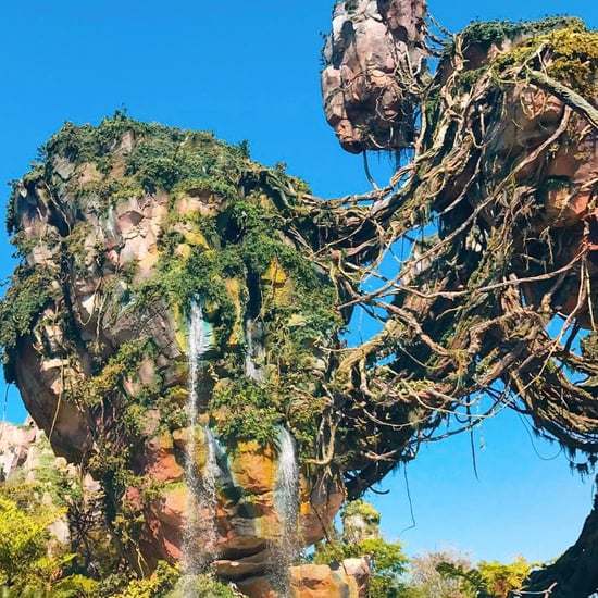 World of Avatar Photos