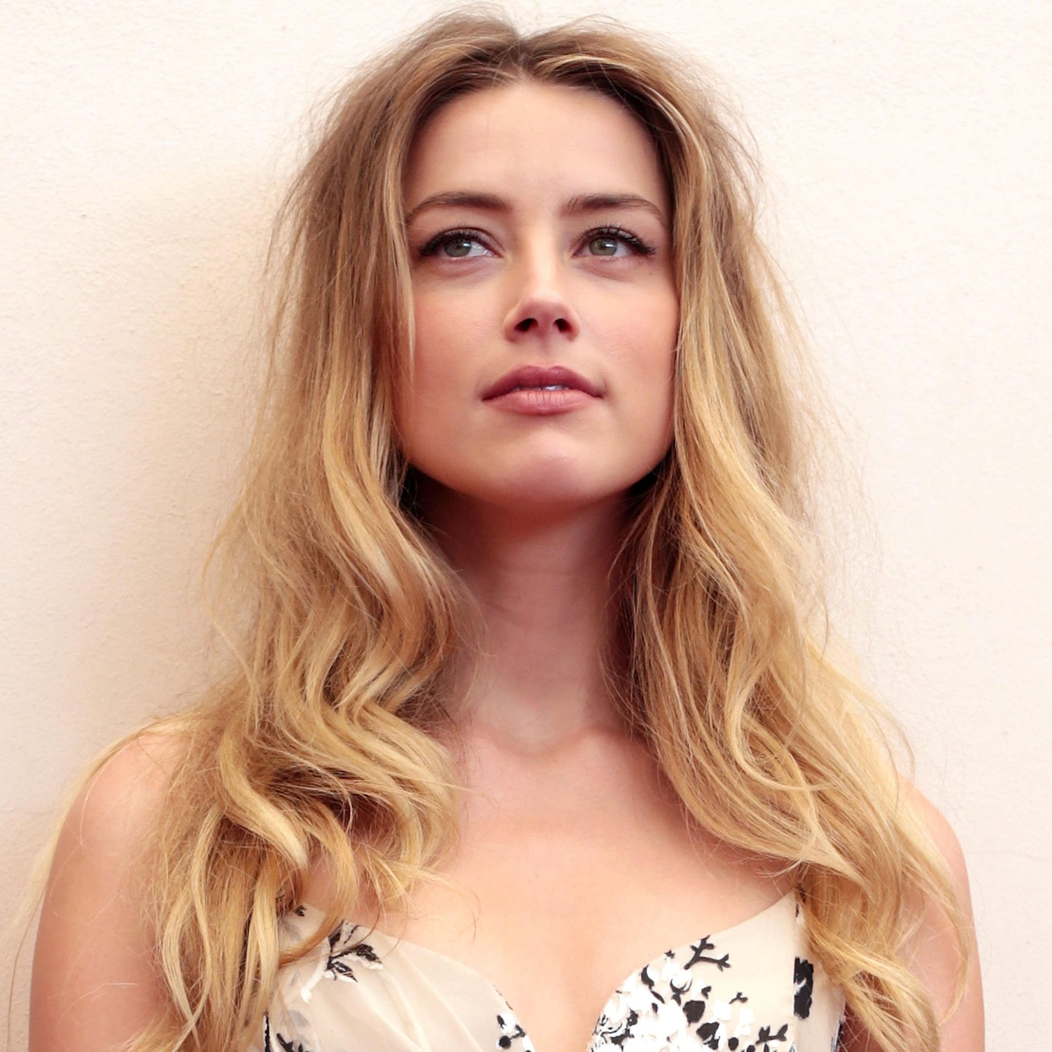 essay about amber heard s domestic abuse from johnny depp essay about amber heard s domestic abuse from johnny depp celebrity