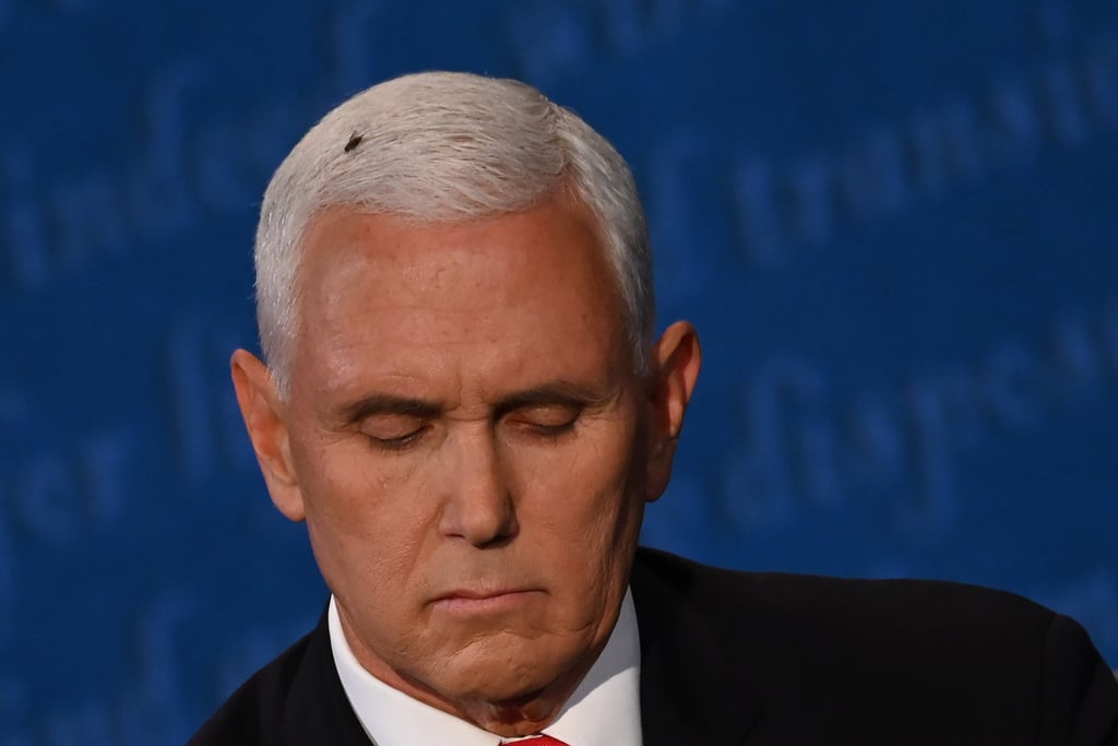 The Fly on Mike Pence's Head