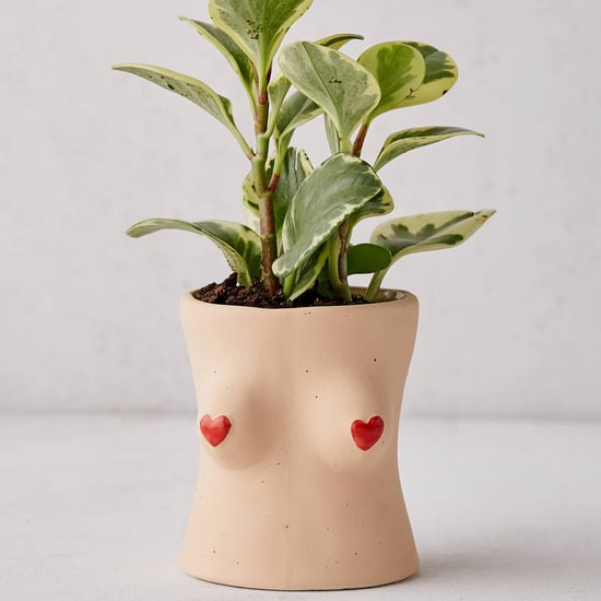 Best Gifts For Plant-Lovers | 2019