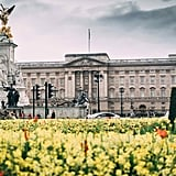 Virtual Tour of Buckingham Palace