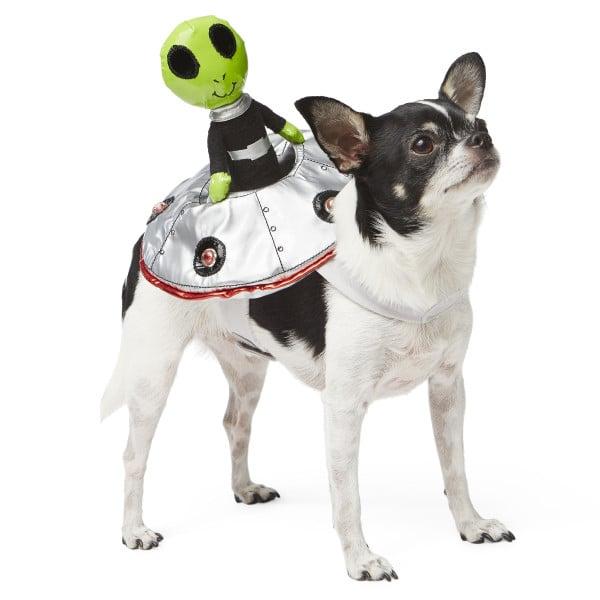 Petsmart Dog Halloween Costumes