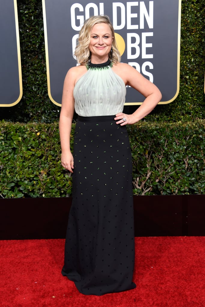 Amy Poehler at the 2019 Golden Globes