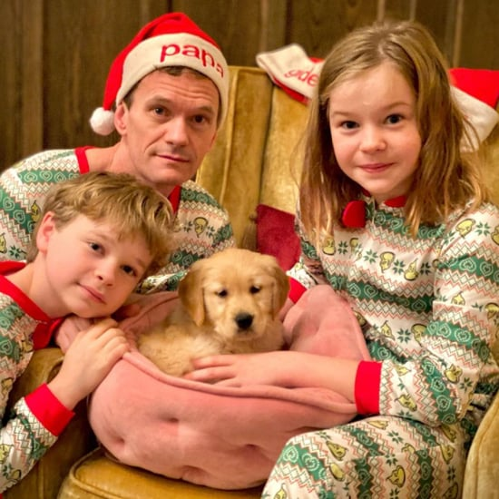 How Many Pets Do Neil Patrick Harris and David Burtka Have?