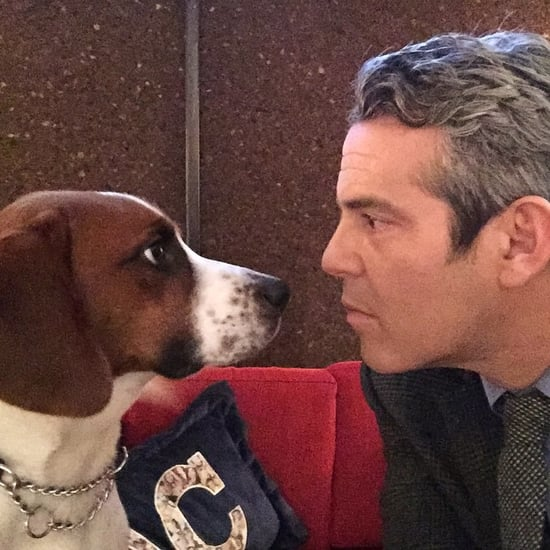 Andy Cohen and Dog Wacha Gifts