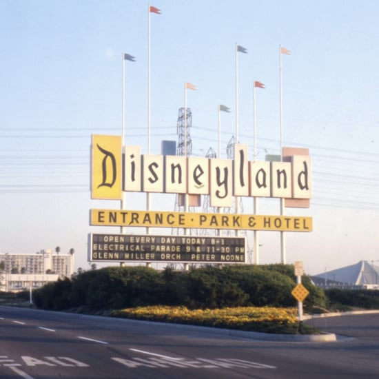 The Coolest Facts About Disneyland Every Fan Should Know
