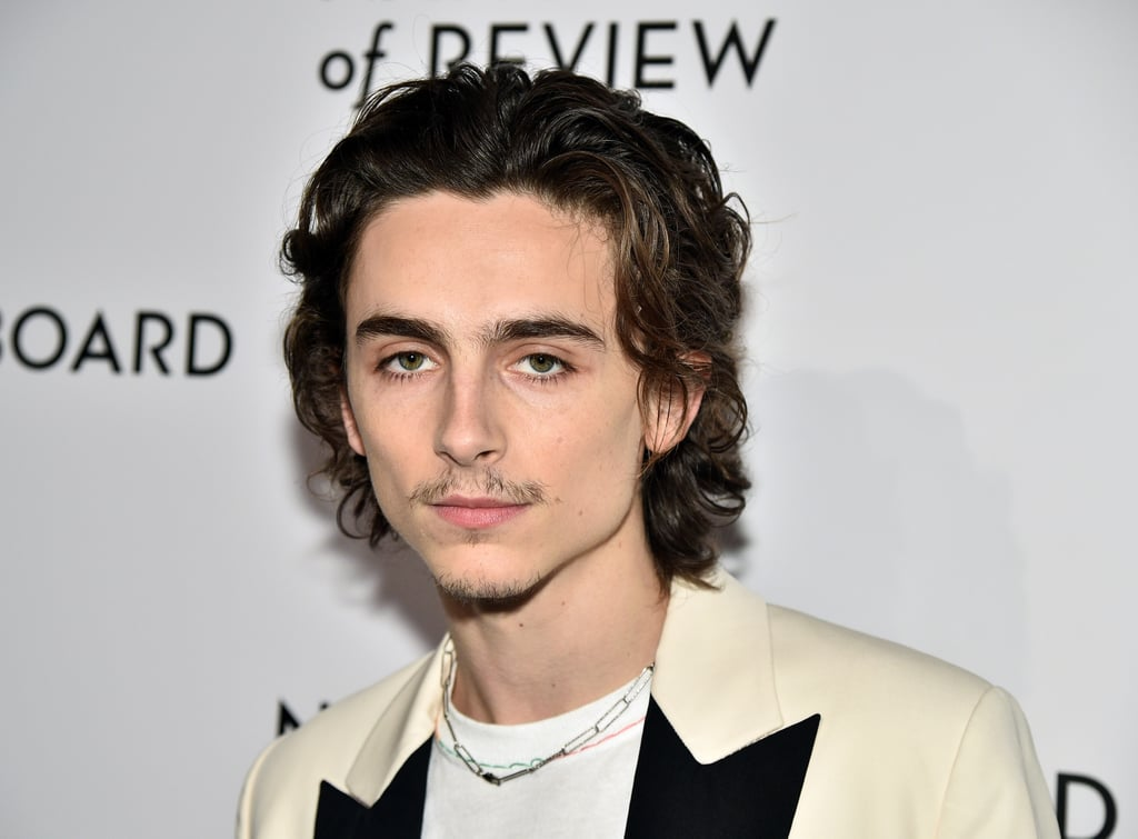 Pictures of Timothée Chalamet With a Mustache and Goatee