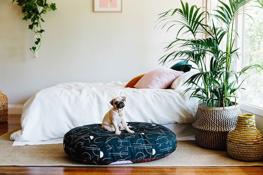 Nice Digs Printed Dog Bed, From $239