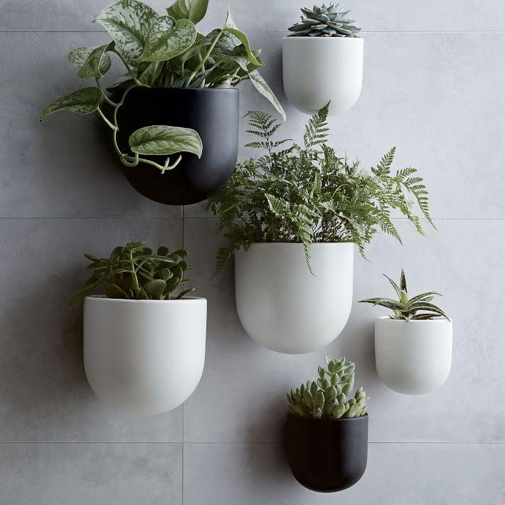 Best Hanging Plant Holders Popsugar Home