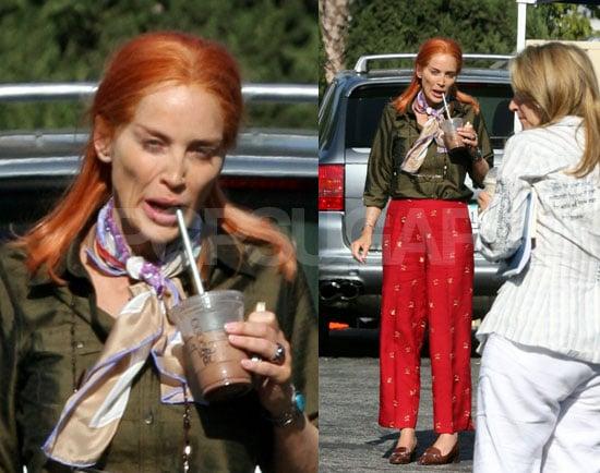 Sharon Stone Looks Ill