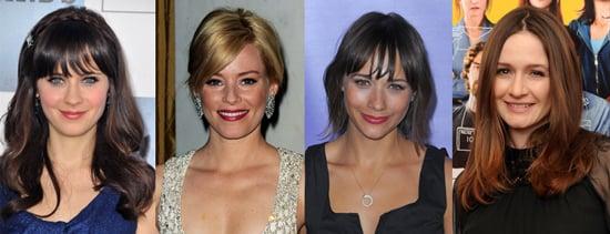 Zooey Deschanel, Rashida Jones, Elizabeth Banks, and Emily Mortimer to Star in My Idiot Brother With Paul Rudd 2010-06-09 11:15:16