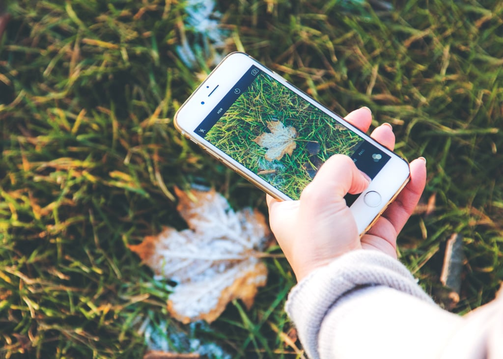 20 Cozy Fall Wallpapers For Your iPhone