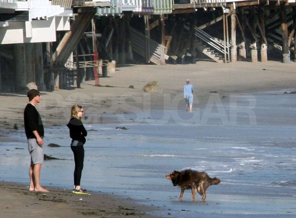Josh Hartnett and Amanda Seyfried take their dogs to the beach in LA.