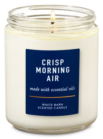 Bath & Body Works Crisp Morning Air Single Wick Candle