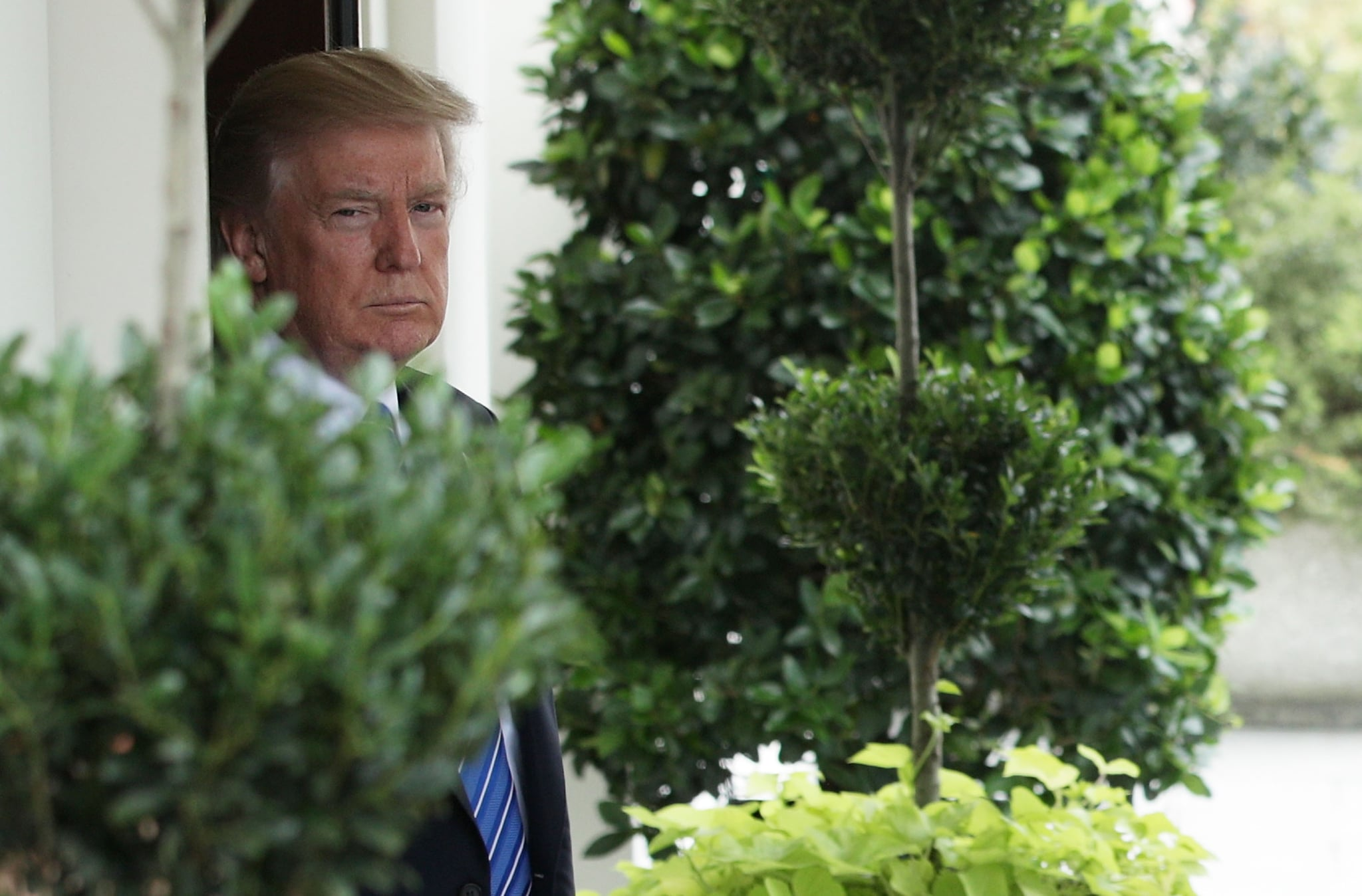 The White House appears to have a serious infestation problem