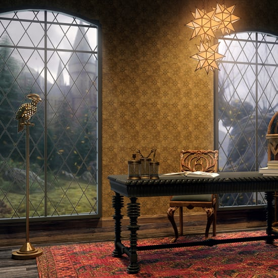 Harry Potter Home Decor For Adults