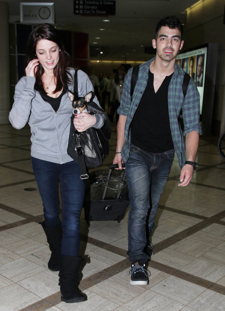 Ashley Greene held her cute dog as she arrived at LAX with Joe Jonas yesterday. Joe helped Ashley with her necklace while they waited for their luggage. The new couple have been in Florida together for a festive break, after their PDA in NYC. All the attention at the airport confused Joe's sense of direction, and Ashley took the opportunity to joke about lessons learned. Joe's hoping for snow, although that would get in the way of their sunny dog walks. He received a pooch as an early Christmas present, and made sure his gifts to others had a sparkle as he shopped for jewellery just before the big day.
