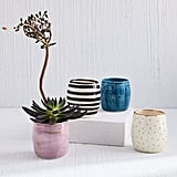 West Elm A Mano Ceramic Planter