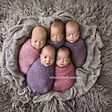 Tucci Quints Newborn Photos