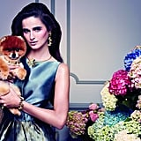 For Tous's Spring 2013 campaign, Mario Sorrenti captured his model perfectly, and we mean Tito the Pom, of course. Photo courtesy of Tous