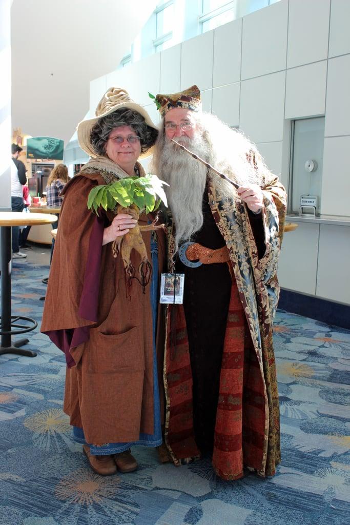 Professor Sprout and Albus Dumbledore