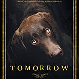 Tomorrow by Damian Dibben