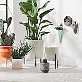 Rivet Modern Hexagonal Earthenware Wall Mount Planter and Modern Earthenware Triangle Wall Mount Vase