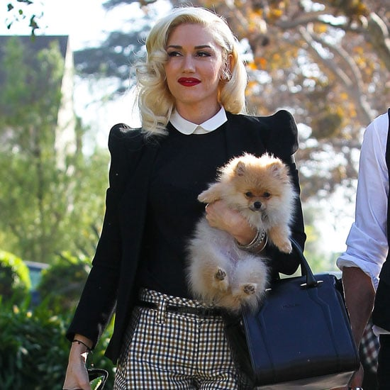 Gwen Stefani Wearing Plaid Shorts