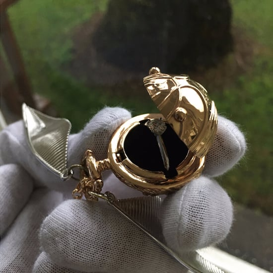 Harry Potter Snitch Proposal